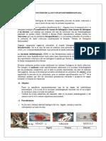 Bioquimica Practica proteinas