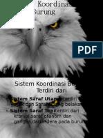 Presentasi Sistem Koordinasi Burung