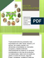 Características de los productos y servicios objeto de la oferta internacional.