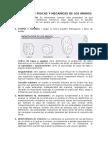 2.1.1propiedades Físicas y Mecánicas de Los Áridos