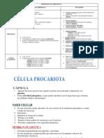 biomoleculas organicas 1