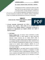 Conclusiones Pleno Juris Reg Laboral - Huancayo