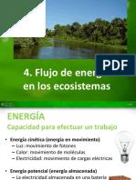 4. Flujo de energía en los ecosistemas.pdf
