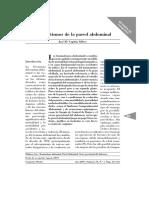 Dialnet-TraumatismosDeLaParedAbdominal-2523106