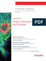 Ch 9 Protein Detection Analysis