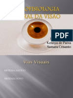 _Neurofisiologia  do olho.pdf