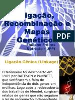 seminrio7ligaorecombinaoemapasgenticos-140102164558-phpapp01
