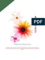 cours-illustrator.pdf