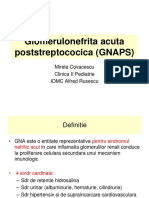 Glomerulonefrita Acuta Poststreptococica (GNAPS)-Sc