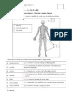 Exercícios sobre o sistema nervoso 1.doc