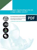 Pedigree dog breeding in the UK