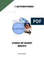 Manual Query Básico - Web
