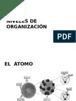 2-Biology-LevelsofOrganization_1_[1].pptx