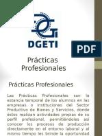 Presentacion Practicas Profesionales 2014
