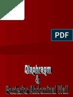 2.Diaphragm