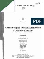 comunidades nativas y desarrollo productivo.pdf