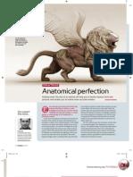 Animals Anatomy Tips