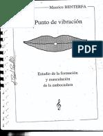 M. Benterfa - El Punto de Vibracion