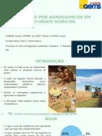 Slide sobre poluiçao por agroquimicos