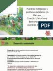 Pueblos indígenas y política ambiental en México