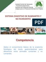 Clase Anatomía Fisiológica Del Sistema Digestivo. 2015.