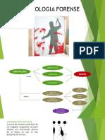 hematologia forense PPT