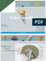 Diapositiva para expo.pptx