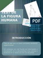Test Figura Humana Final