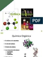SEMANA 11 - Atomo de Carbono y Hidrocarburos (1)