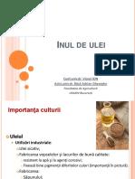 Inul de ulei.pdf