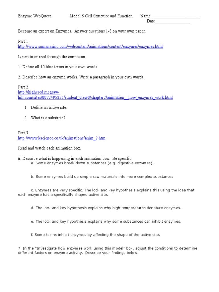 worksheet Enzyme Activity Worksheet 1526137024v1