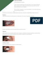 Instrucciones para el cepillado de dientes.docx