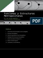 Funciones y Estructuras Metropolitanas