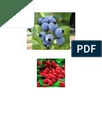 (Strawberry) Damiavvfv
