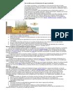 El uso de plantas acuáticas para el tratamiento de aguas residuales.docx