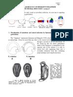 Molecular Biology of Spemann Organizer.pdf