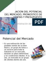 Tema I. Estimacion Del Potencial Del Mercado