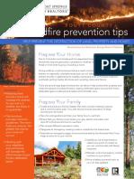 SSBR_WildfireBrochure