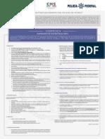 Conv_INVESTIGACION.pdf