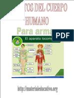 AparatosDelCuerpoHumanoME.pdf