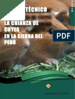 Manual Cuy PDF