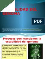 23-estabilidad-del-genoma.ppsx