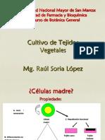 4ta sem- Tejidos cultivo.pdf
