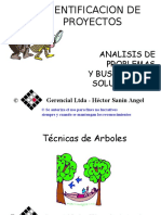 Copia de Arboles-hsa