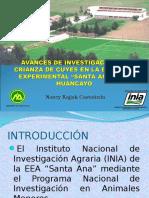 Avances de Investigacion 2[1]