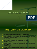 Diagnostico de Virus Rabico