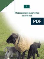 NR38526.pdf