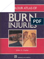 Chapmann & Hall - A Color Atlas of Burn Injuries (1992).pdf