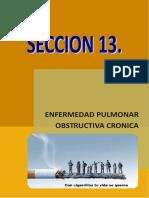 capitulo14 neumologia