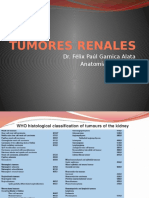 Tumores Renales 111029185257 Phpapp01